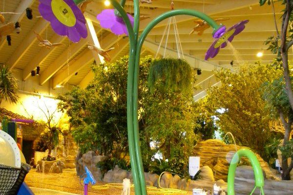 indoor water design features